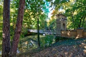 Rosental Bridge, Suspension Bridge, River, Oker, Autumn, Foliage, Braunschweig, Lower Saxony, Germany, Europe