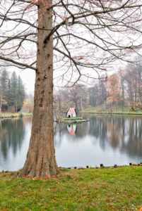 Stadtgraben, Schwanenhaus, Herbst, Winter, Wolfenbüttel, Niedersachsen, Deutschland, Europa