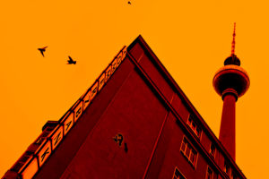 Tauben im Flug, Berlin, Fernsehturm