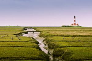 Germany, Schleswig-Holstein, North Frisia, Eiderstedt, St. Peter-Ording, beach,