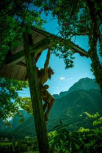 Italy, South Tirol, the Dolomites, Toblach (municipality), Aufkirchen, cross, wayside cross