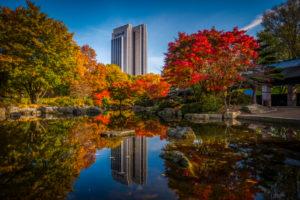 Deutschland, Hamburg, Park, Parkanlage, Planten un Blomen, Herbst