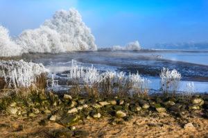 Germany, Hamburg, Kirchwerder, winter Elbe landscape