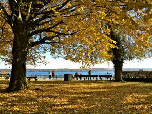 Schondorf am Ammersee / Lake Ammer, lake, boat, promenade, park, park benches, visitors, quiet, hike, lime, yellow leaves, foliage, autumn,