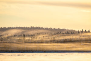 Finland, Lapland, Muonio, landscape with fog in winter