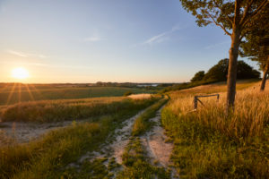 Germany, Mecklenburg-West Pomerania, landscape, dirt road, evening