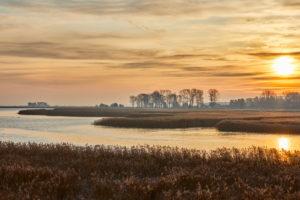 Germany, Mecklenburg-West Pomerania, Darss, Meininger Bridge, morning mood