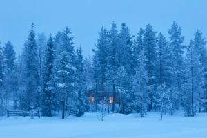 Finnalnd, Lapland, Forest, Winter, evening, Cold, Hut