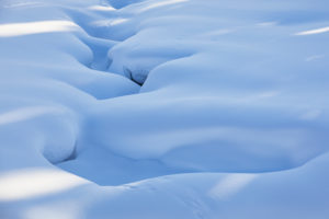 Finland, Lapland, winter, snow cover, detail