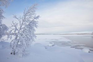 Finland, Lapland, winter, landscape, lake