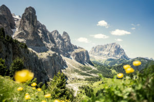 Gardena pass, Sassolungo and Sella group