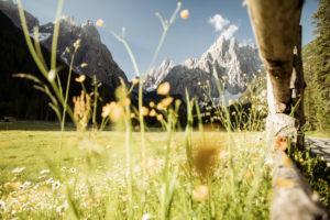 Fischleinboden, Dolomites
