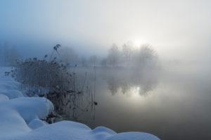 Mist in winter morning, Kochelsee, Kochel, Bavaria, Germany