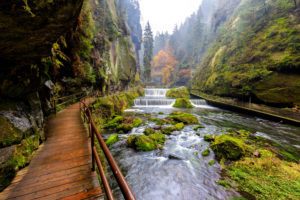 The Kamnitz Gorge in Saxon switzerland national park