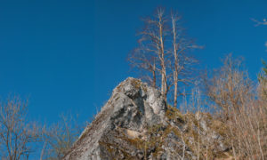 Mountain rocks with blue sky in National Park Harz in GermanyMountain rocks with blue sky in National Park Harz in Germany