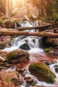 Beautiful mountain waterfalls with long exposure in golden spring sunlight. Ilsefälle of the mountain river Ilse in the Ilsetal in Ilsenburg, National Park Harz, Saxony-Anhalt in Germany