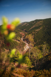 View to a valley road from a mountain top cliffs in spring with blue sky. Ahrendsberger Klippen, Okertal, Okertalsperre, Oker (Goslar) National Park Harz
