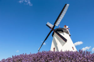 The Dutch windmill in ≈rsdale (built in 1877), Europe, Denmark, Bornholm,