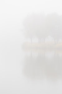 Europe, Germany, Lower Saxony, Otterndorf. Dense sea fog hides the pastures, which are reflected in the lake.