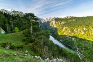 Europe, Montenegro, Žabljak Municipality, Dumitor National Park, Sušičko jezero