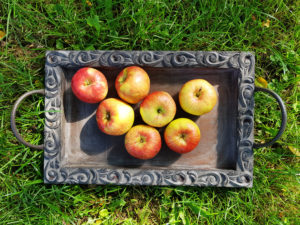 Apples on wooden tray in the grass