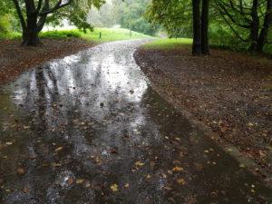 Park in rainy weather