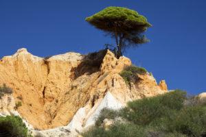 Praia da Falésia (Praia do Barranco das Belharucas), Vilamoura, Quarteira, Faro, Algarve, Portugal