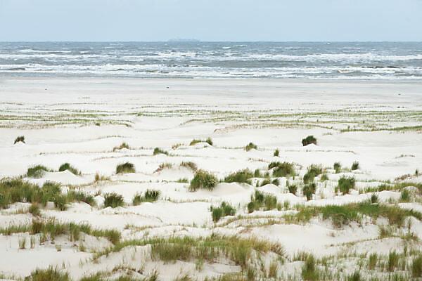 Deutschland, Niedersachsen, Ostfriesland, Babydünen auf der Insel Langeoog.