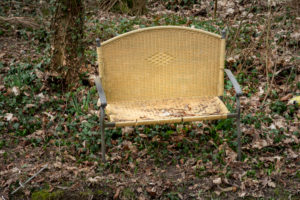 Disposed old bench on the bank of a stream.