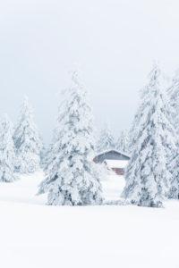 Deutschland, Baden-Württemberg, Schwarzwald, Winter auf der Hornisgrinde.