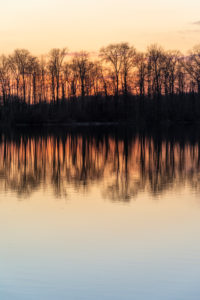 Germany, Baden-Wuerttemberg, Karlsruhe, evening mood at Grötzinger Baggersee.
