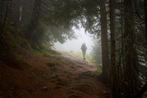 Österreich, Montafon, Wanderer im Bergwald bei Partenen.
