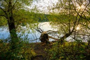 Deutschland, Baden-Württemberg, Karlsruhe, am Grötzinger See.