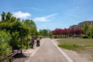 Park an der Jugendfarm Moritzhof, Verlängerung vom Mauerpark, Prenzlauer Park, Berlin