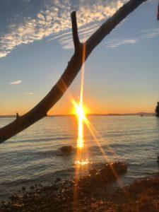 Sonnenuntergang, Mittelmeer, Adria, ursprünglich, Steine, Ast,