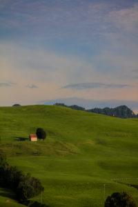 Alm, meadow, Switzerland, Appenzell, Appenzeller Land, hut, lonely, idyll, evening mood