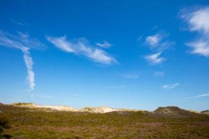 Sylt, nature, nature reserve, North Sea