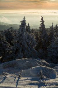 Winter landscape at the Brocken, Harz, Saxony-Anhalt, Germany,