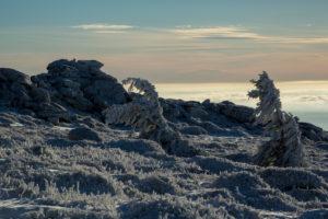 Iced up landscape at the Brocken, Harz, Saxony-Anhalt, Germany,