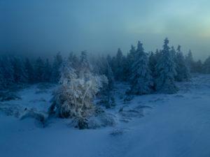 Winter morning at the Brocken, Harz, Saxony-Anhalt, Germany,