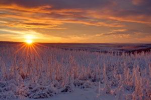 North America, Canada, Yukon, Yukon Territory, Dempster Highway, sunset on Dempster Highway