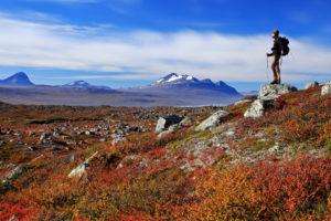 Europe, Sweden, Lapland, province of Norrbotten, Stora Sjöfallets national park, view of the Kungsleden on the Akka mountain massif