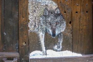 Italy, Piedmont province of Cuneo, Cottian Alps, Valle Maira Dora-Maira massif, Chiappera ski tour, hut, painted wooden wall, wolf