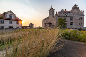 Grain and flower meadow in front of Cadolzburg Castle at sunset, Cadolzburg, Franconia, Bavaria, Germany