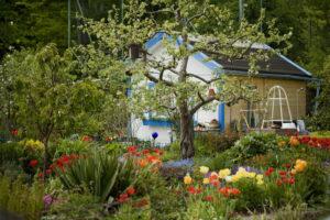 Allotment, flowers, summer house,