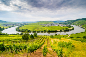 The riverbend at Trittenheim, Moselle valley, Rhineland-Palatinate, Germany