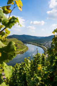 Moselle river at Bremm, Moselle valley, Rhineland-Palatinate, Germany