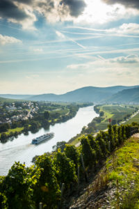 Cruise ship in backlight on the Moselle river near Wintrich, Moselle valley, Rhineland-Palatinate, Germany