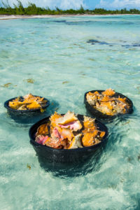 Close up of freshly harvested conches     (Lobatur gigas), Five Cay beach, Providenciales, Turks and Caicos