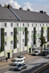 Essen, Ruhr area, North Rhine-Westphalia, Germany - Wall-bound facade greening on freshly renovated residential buildings of the Allbau housing association on the busy B224 Gladbecker Straße in Altenessen, the vertical gardens, planted with perennials, grasses and small wood, filter pollutants from the air and improve the urban climate.